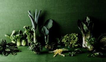 Basische Ernährung – was macht uns sauer?