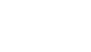 German Brand Award Logo