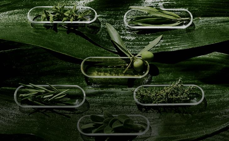 Ogaenics-natuerliche-nahrungsergaenzung-Zutaten