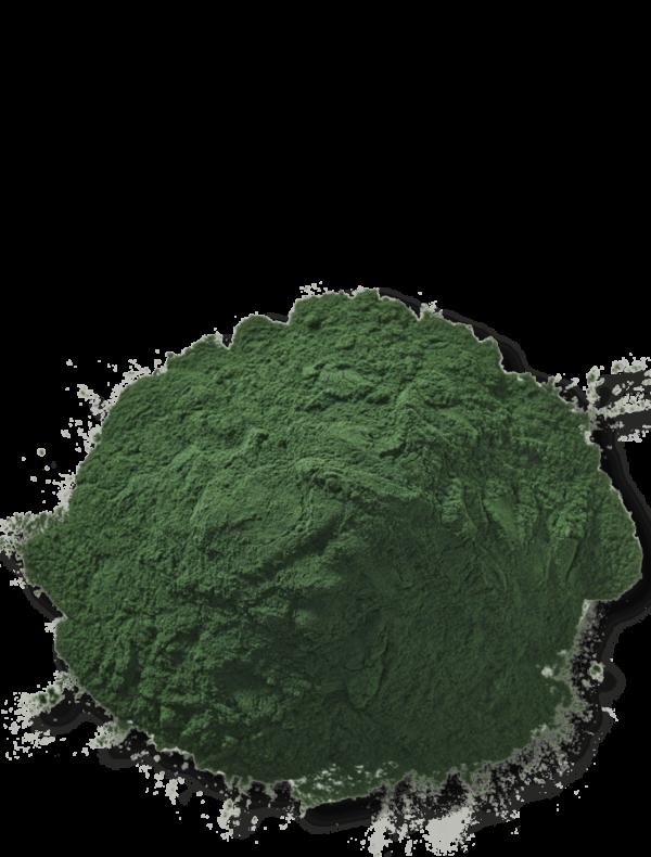 bio-spirulina-ogaenics-zutat-natuerlich